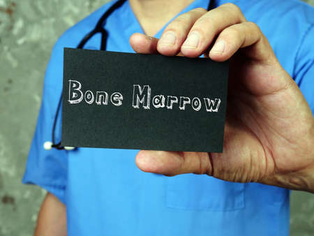 Medical concept meaning Bone Marrow with inscription on the sheet.