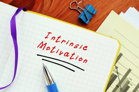 Intrinsic Motivation inscription on the sheet.