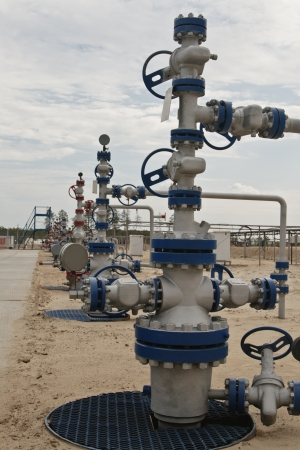 wellhead: Wellhead in the oil and gas industry