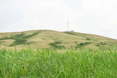 Laderas con hierba verde y el cielo de color blanco puro Foto de archivo - 12328684