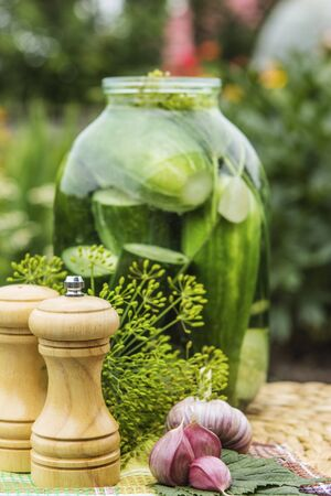 pepperbox: Beautiful dainties, fennel and garlic on table Stock Photo