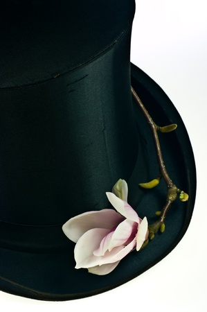 Black top hat and pink magnolia flower