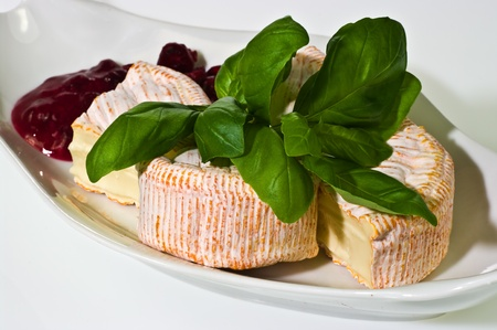 Soft ripened cheese with cumberland sauce and basil leaves