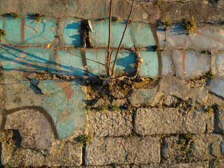 redecorating: Crumbling Plaster with green Stock Photo