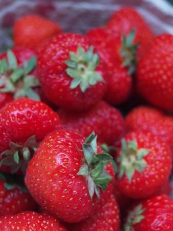 maturity: Strawberries in the cardboard box, medium maturity