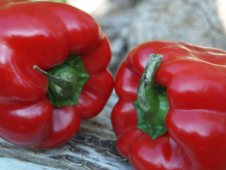 red peppers: freshly harvested red peppers Stock Photo