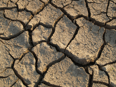 waterless: longer time parched, cracked soil