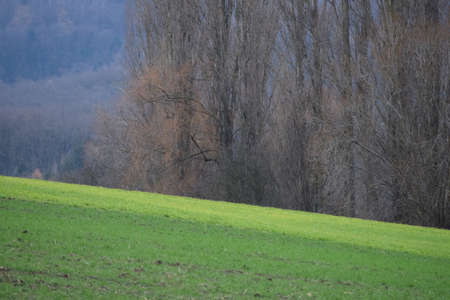 a sloping field characterizes the landscape