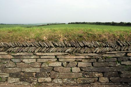 drystone: Dry-stone wall in farmland with grass growing on top Stock Photo
