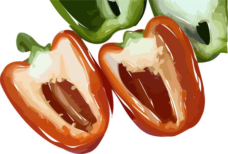 bell pepper: Illustrated red and green peppers cut in half and isolated on white Illustration