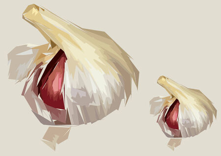 clove of clove: Illustration of two garlic bulbs with one red clove showing Illustration