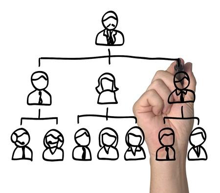 organigrama: Personas dispuestas en una jerarquía.