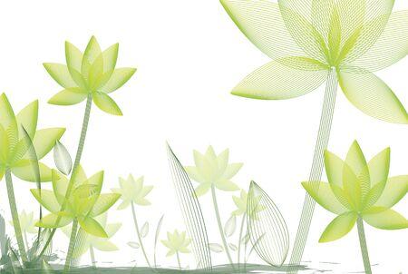 waterlilies: lotus -floral pattern