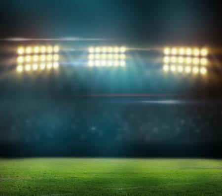 stadium crowd: Green soccer field,
