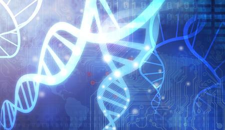 adn humano: ADN Strands  Foto de archivo