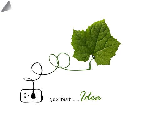 Light bulb eco concept idea, photo