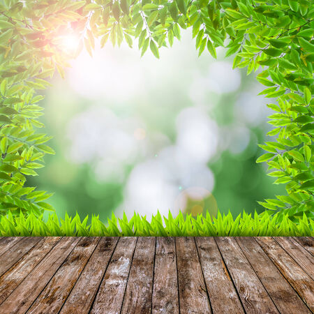 Fresh spring green grass with green bokeh and flare and wood floor  photo
