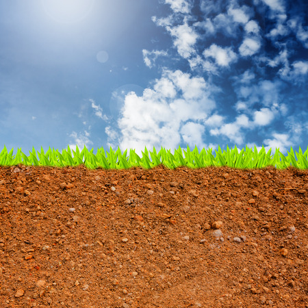cross section of grass and soil against blue sky and clouds.
