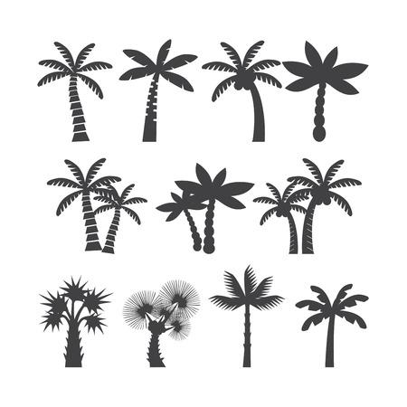 palmetto: palm tree icon set, each icon is a single object (compound path)