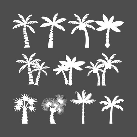 palm tree icon set