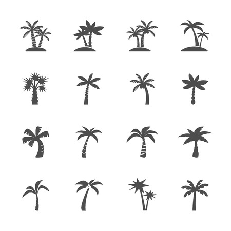 coconut tree icon set, vector eps10. Çizim