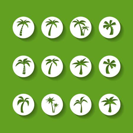 palmetto: coconut tree circle icon set, sticker version, vector eps10. Illustration