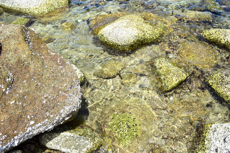 The stone and coral under the clear sea at Koh Chang island in Thailand
