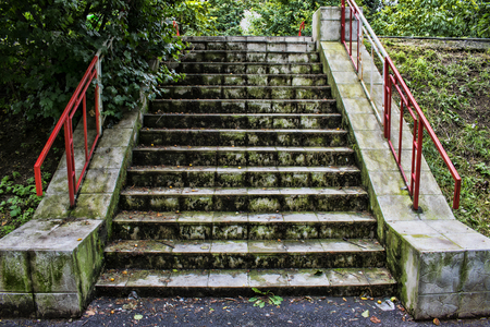 Old Concrete Stairway Covered In Green Mold And Vegetation