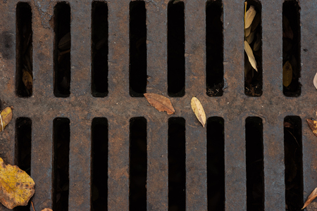 Autumn Leaves On Drainage Sewer Hatch With Grating Stock Photo