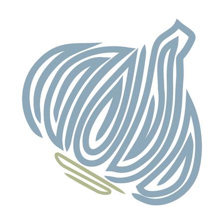 Garlic illustration isolated on white background Vector