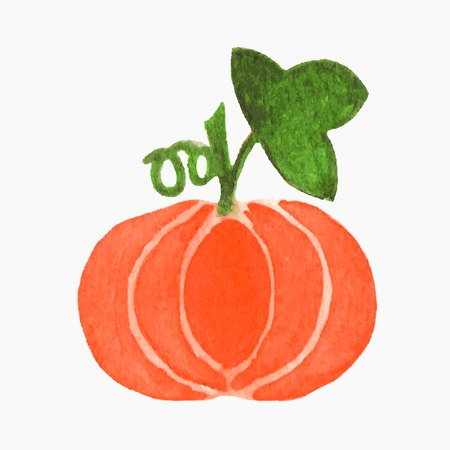 traced: Hand-drawn pumpkin. Real watercolor drawing. Vector illustration. Traced painting
