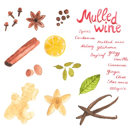 Seamless watercolor pattern with cinamon, ginger,cloves,allspice,cardamom, nutmeg, star anise on the white background