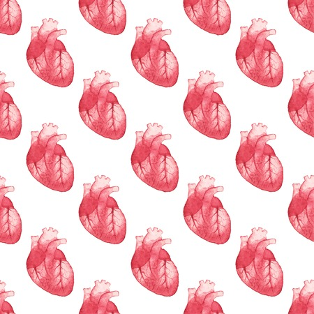 right atrium: Watercolor seamless pattern with realistic human heart on the white background Illustration