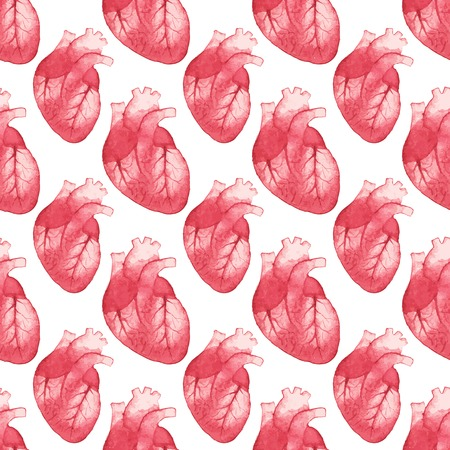 left ventricle: Watercolor seamless pattern with realistic human heart on the white background Illustration