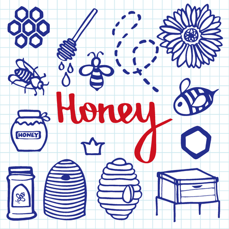 blue pen: Honey set.  Blue pen doodle drawing on the exercise book background.  Vector illustration.