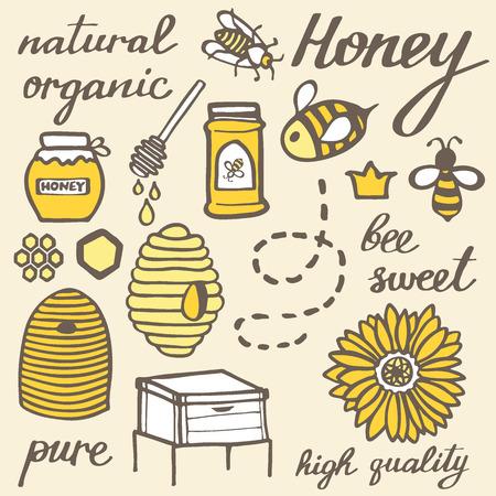 miel de abeja: Miel establecido. Elementos apicultura garabato dibujado a mano. Ilustración del vector.