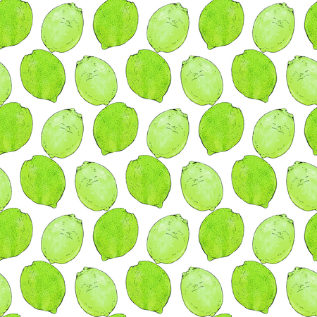 citron: Limes or lemons. Seamless pattern with fruits. Hand-drawn background. Vector illustration. Real watercolor drawing. Illustration