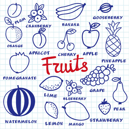 blue pen: Fruit set. Hand-drawn different cartoon fruits made with blue pen on the notebook sheet. Doodle drawing. Vector illustration.