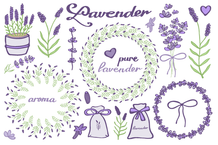 fragrant: Lavender set. Hand-drawn cartoon lavandula collection - flowers, calligraphy, floral elements. Doodle drawing. Vector illustration.