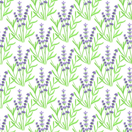 fragrant bouquet: Lavender. Seamless pattern with flowers.