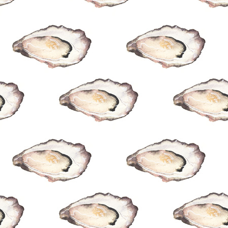 oyster: Oyster - seafood and marine cuisine. Stock Photo