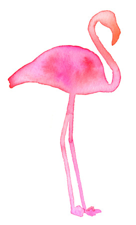 Pink flamingo. Hand drawn exotic bird silhouette. Real watercolor drawing.
