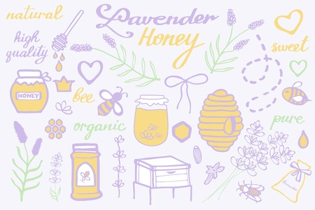 apiculture: Lavender honey set. Hand-drawn cartoon collection. Doodle drawing. Vector illustration. Illustration