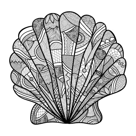 Seashell. Hand drawn shell - anti stress coloring page for adult with high details isolated on white background