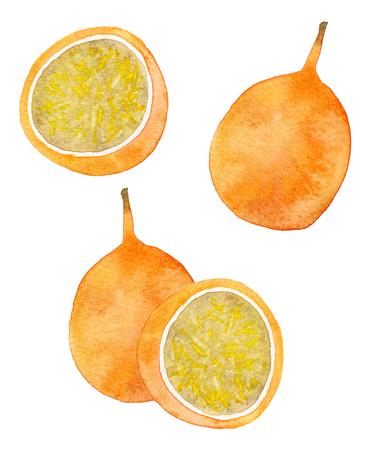 grenadilla: Passion fruit or maracuya set. Hand-drawn fruits - colorful granadilla on the white background. Real watercolor drawing.
