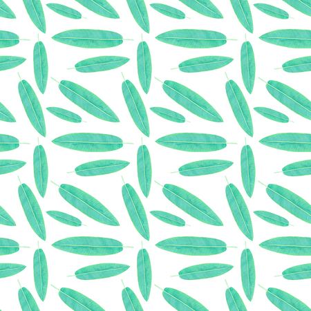 banana leaf: Topical leaves. Seamless pattern with hand-drawn leaf - Hanging Lobster Claw or banana palm on the white background. Real watercolor drawing. Stock Photo