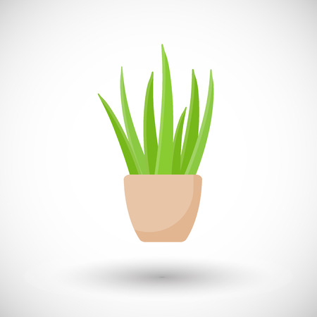 Aloe vera plant in pot vector flat icon, Flat design of medicine, cosmetology and healthcare with round shadow