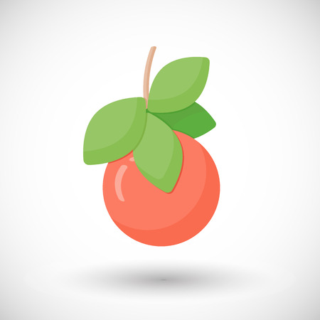 glycemic: Grapefruit vector flat icon, Flat design of food or tropical harvest objects with round shadows, cute vector illustration