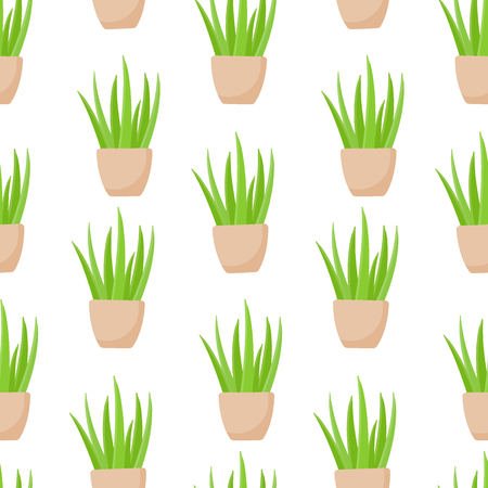 Aloe vera plant in pot pattern, Flat design of medicine, cosmetology and healthcare isolated on the white , illustration with swatch