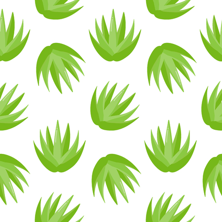 Aloe vera plant vector seamless pattern, Flat design of medicine, nature, cosmetology and healthcare isolated on the white background, vector illustration with swatch